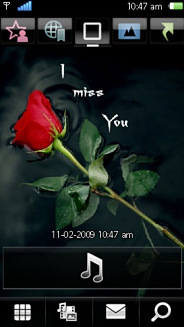Miss you red rose